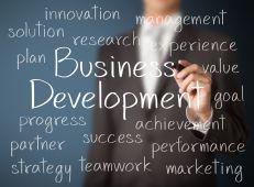 25168526_l business development