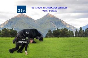GSA VETS2 38652392_m