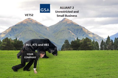 GSA VETS2 and ALLIANT2 38652392_m